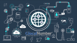 GlocalNumber Platform Overview